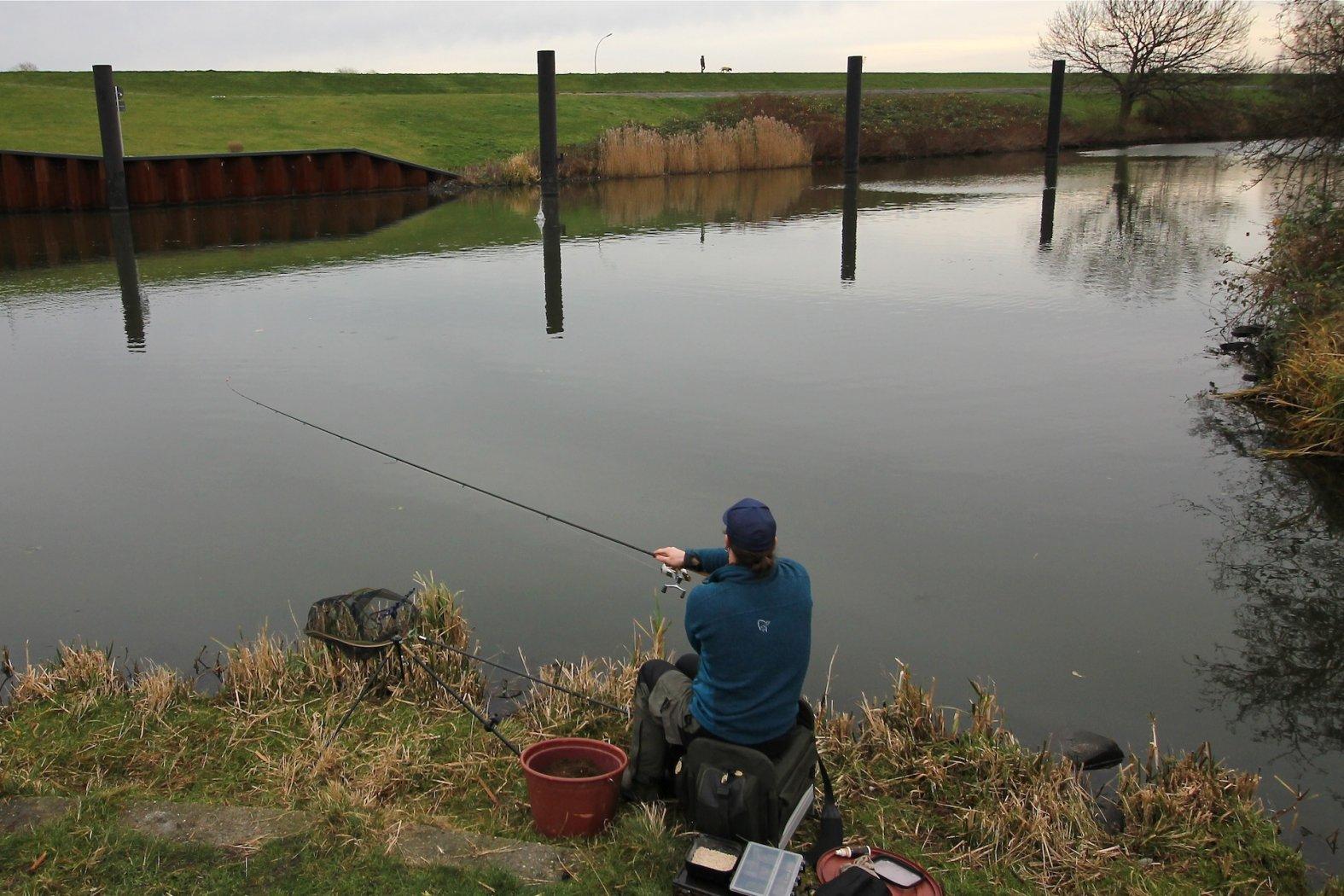 Feedern Grundlagen Feederfischen Basics