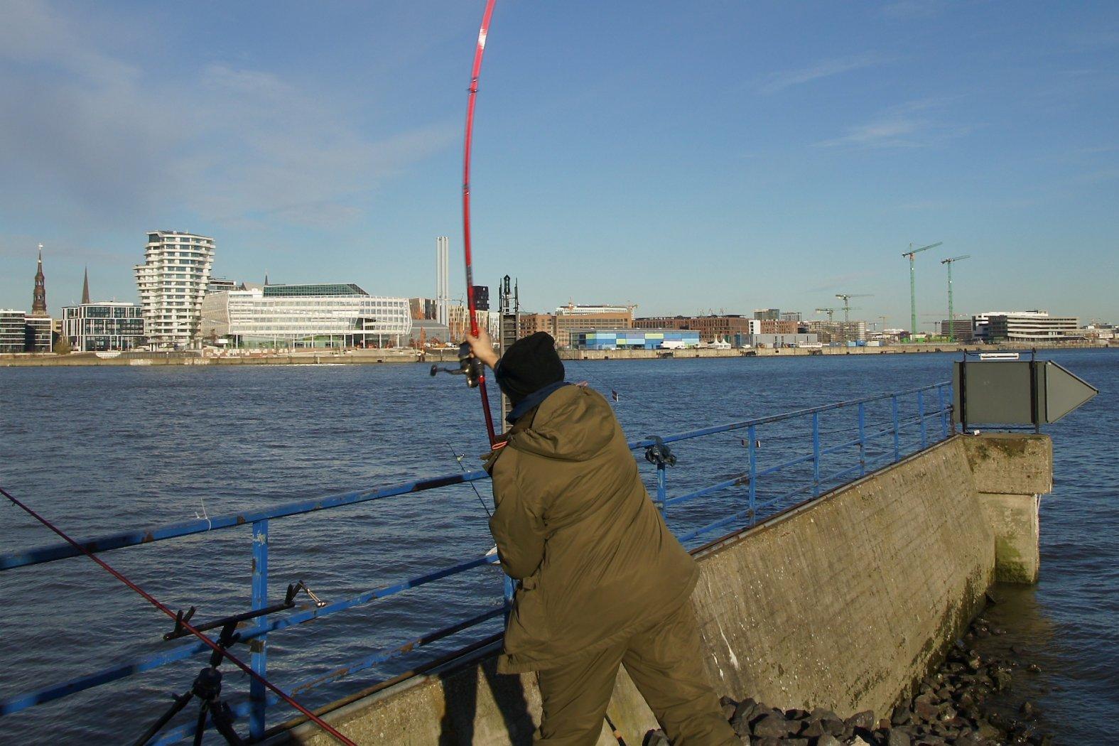 Angeln am Hamburger Hafen