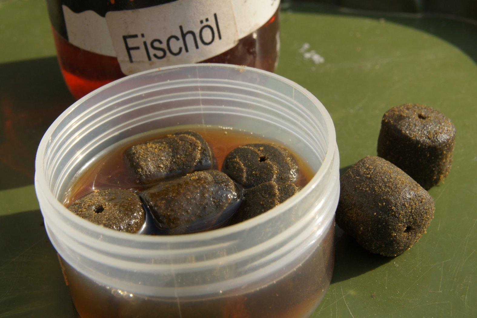 Zum Karpfenangeln: Halibut Pellets in Fischöl