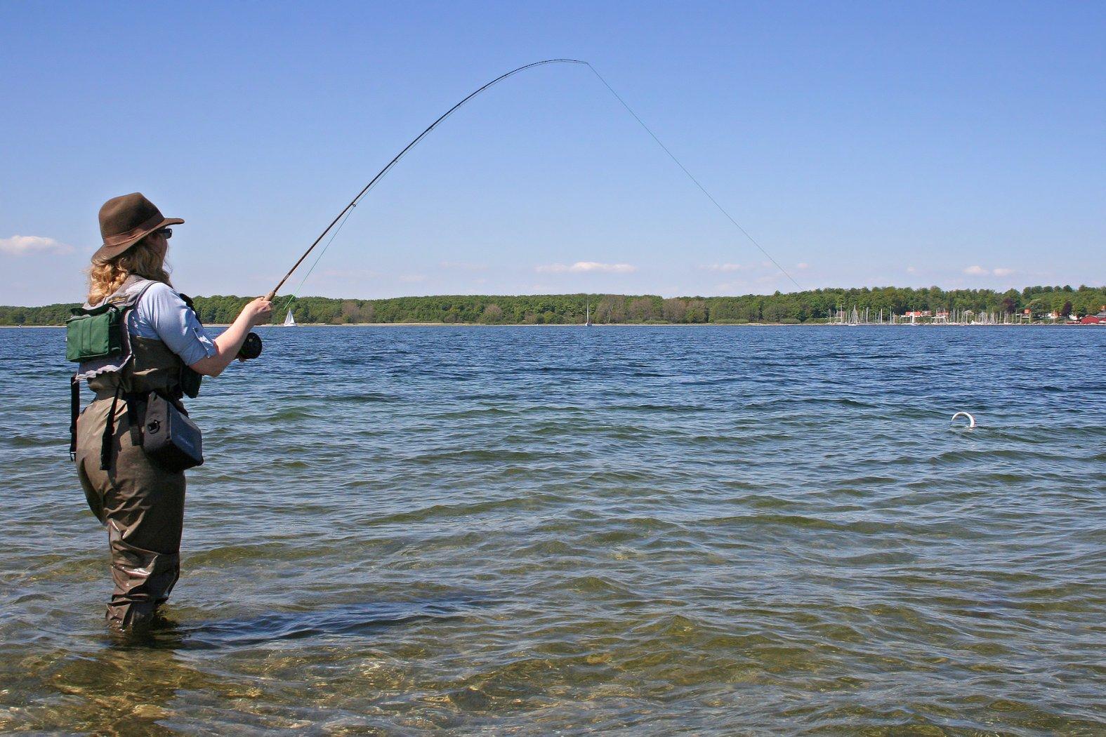 fliegenfischen auf hornhecht