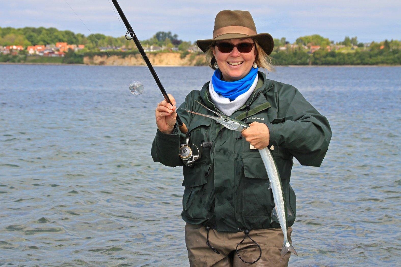 hornhecht hornfisch angeln
