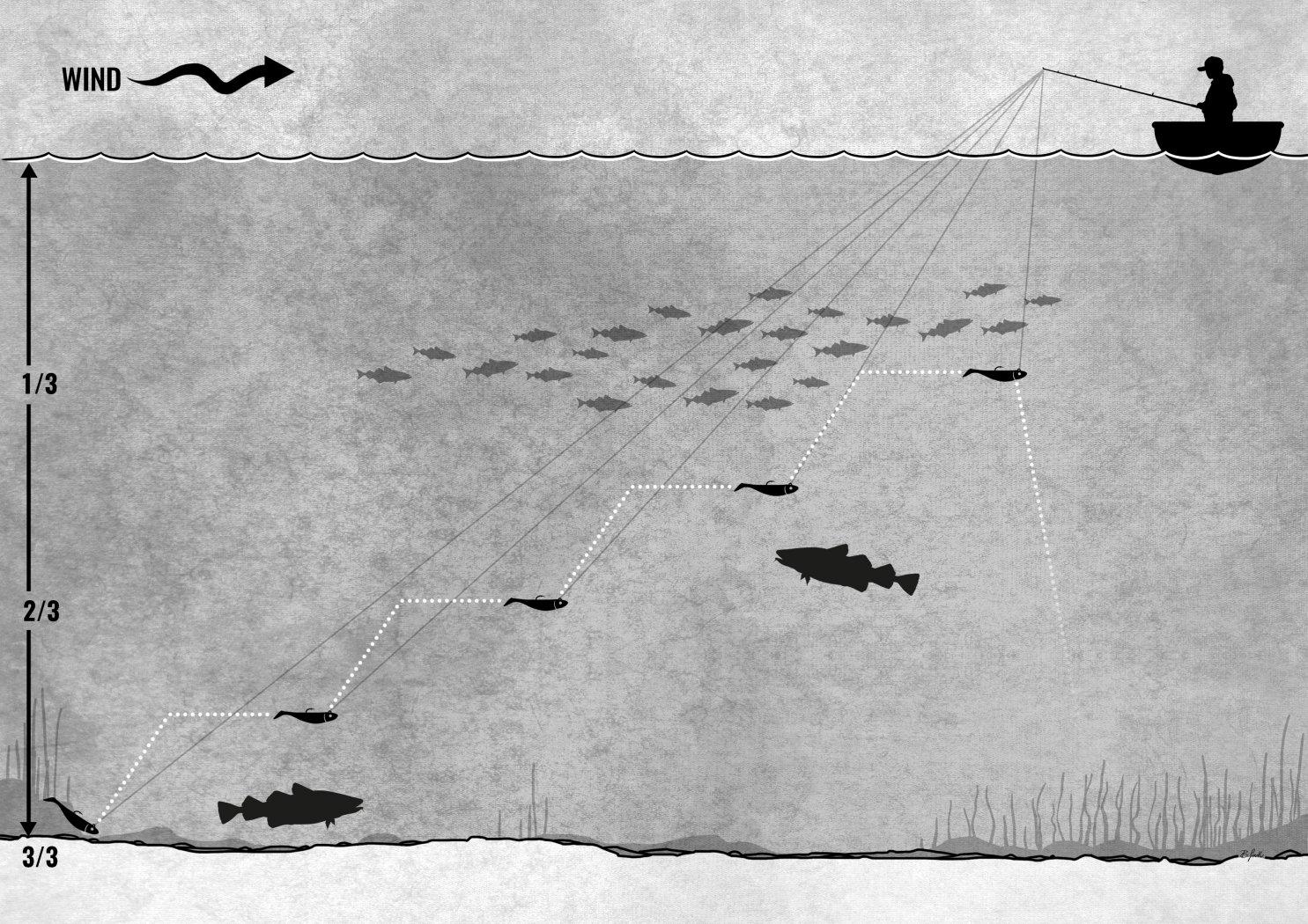 Dorsch und Heilbutt jagen im Mittelwaser