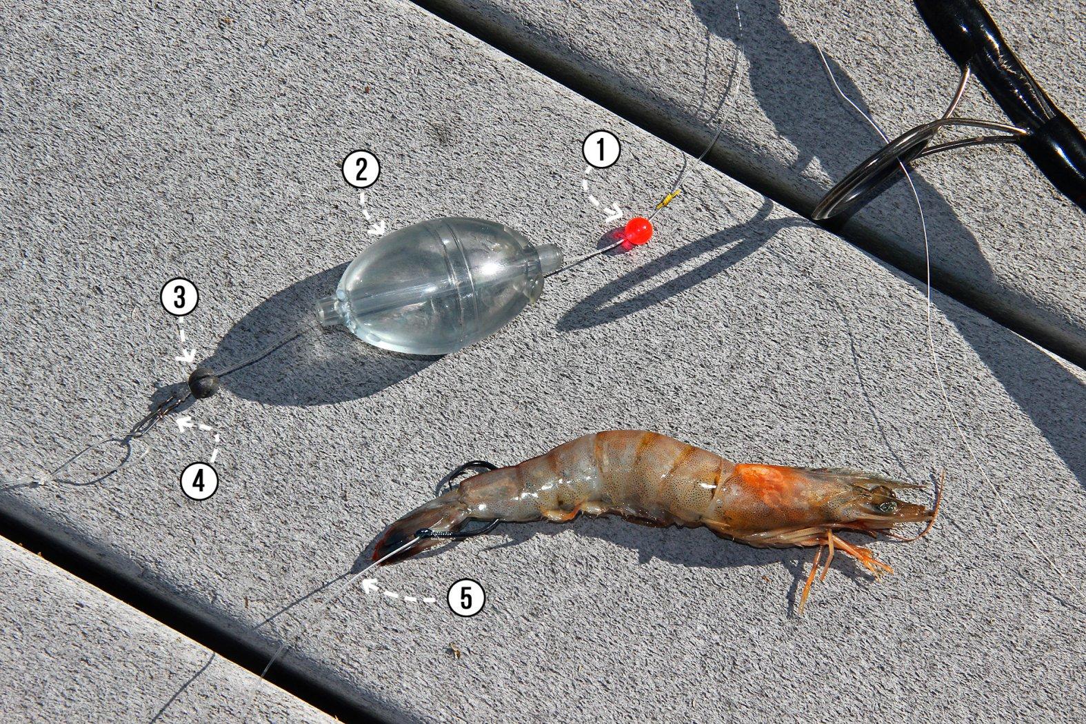 Shrimp anködern an Wasserkugelmontage