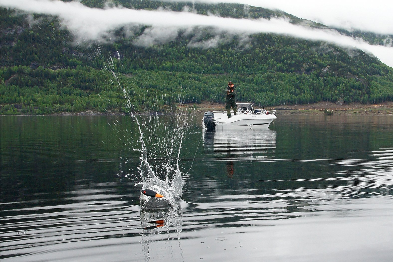 Hechtangeln in Norwegen am Kröderfjord
