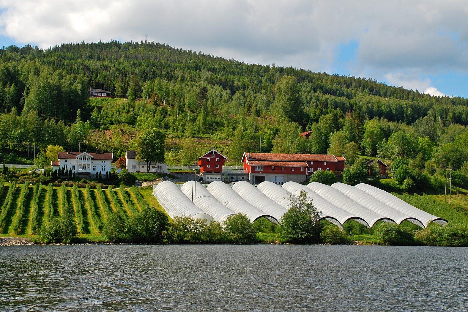 Unterkunft in Søndre Bjerkerud am Kröderfjord