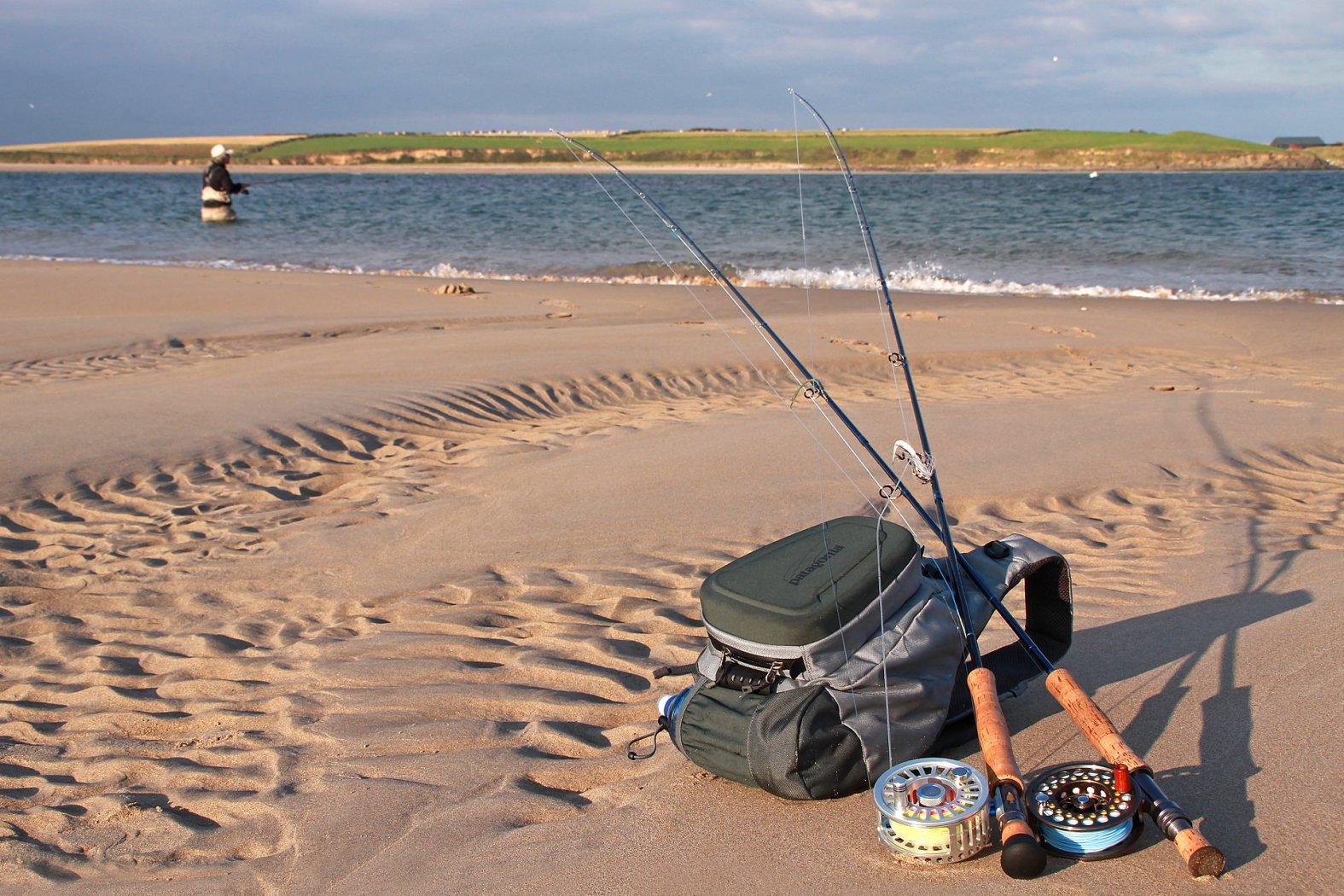 fliegenruten zum wolfsbarsch angeln