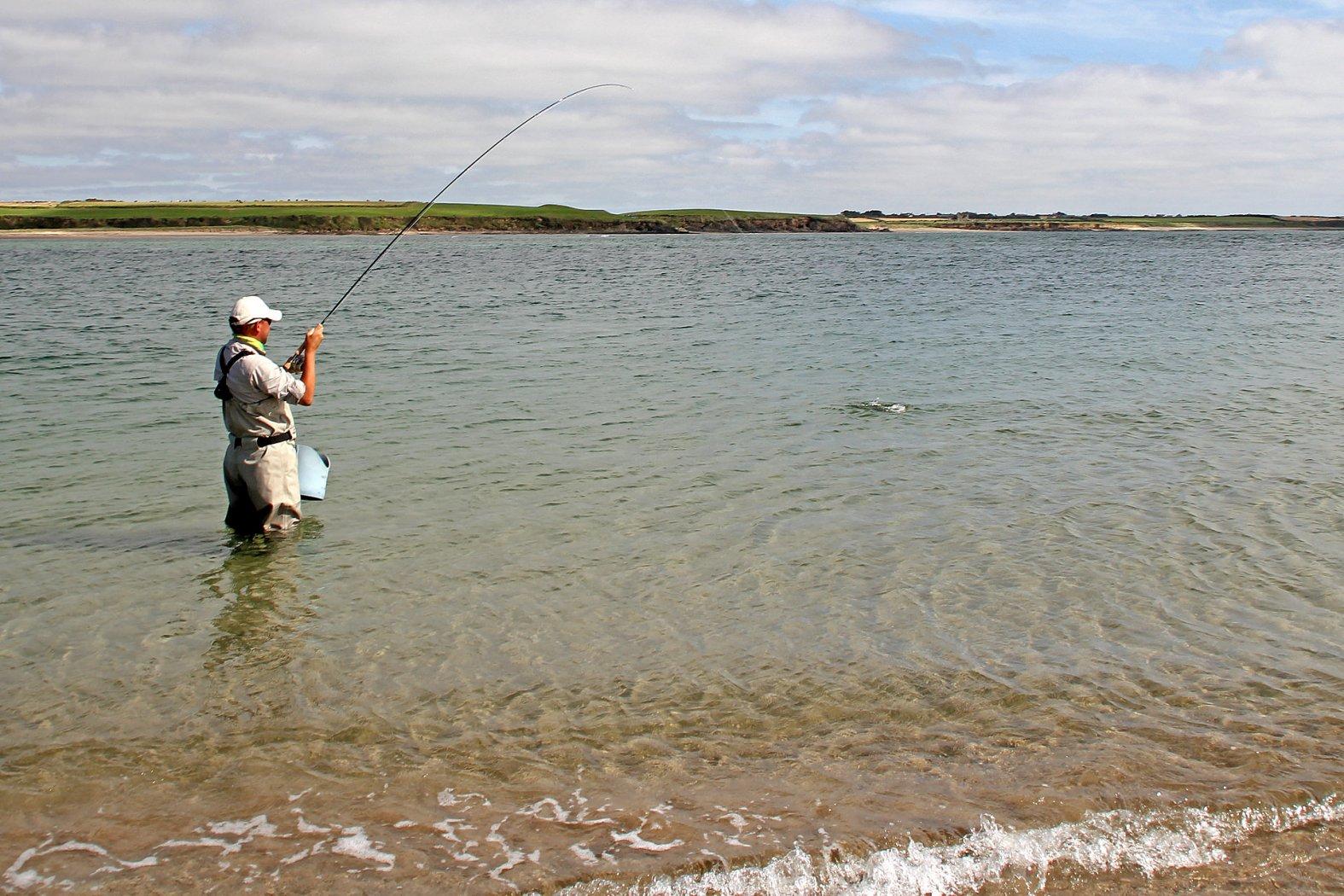 wolfsbarsch angeln in der strömung