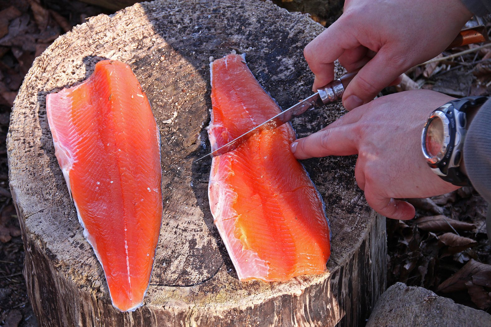 Meerforellen-Filets zum Grillen vorbereiten