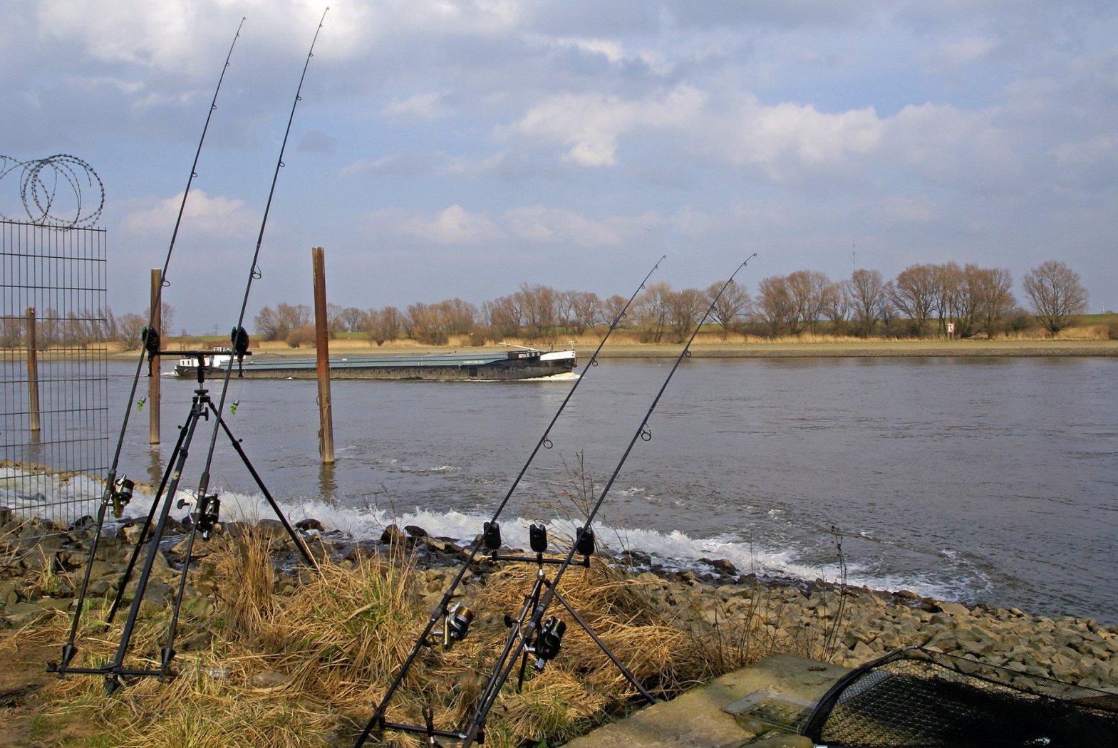 schlagschnur karpfen angeln