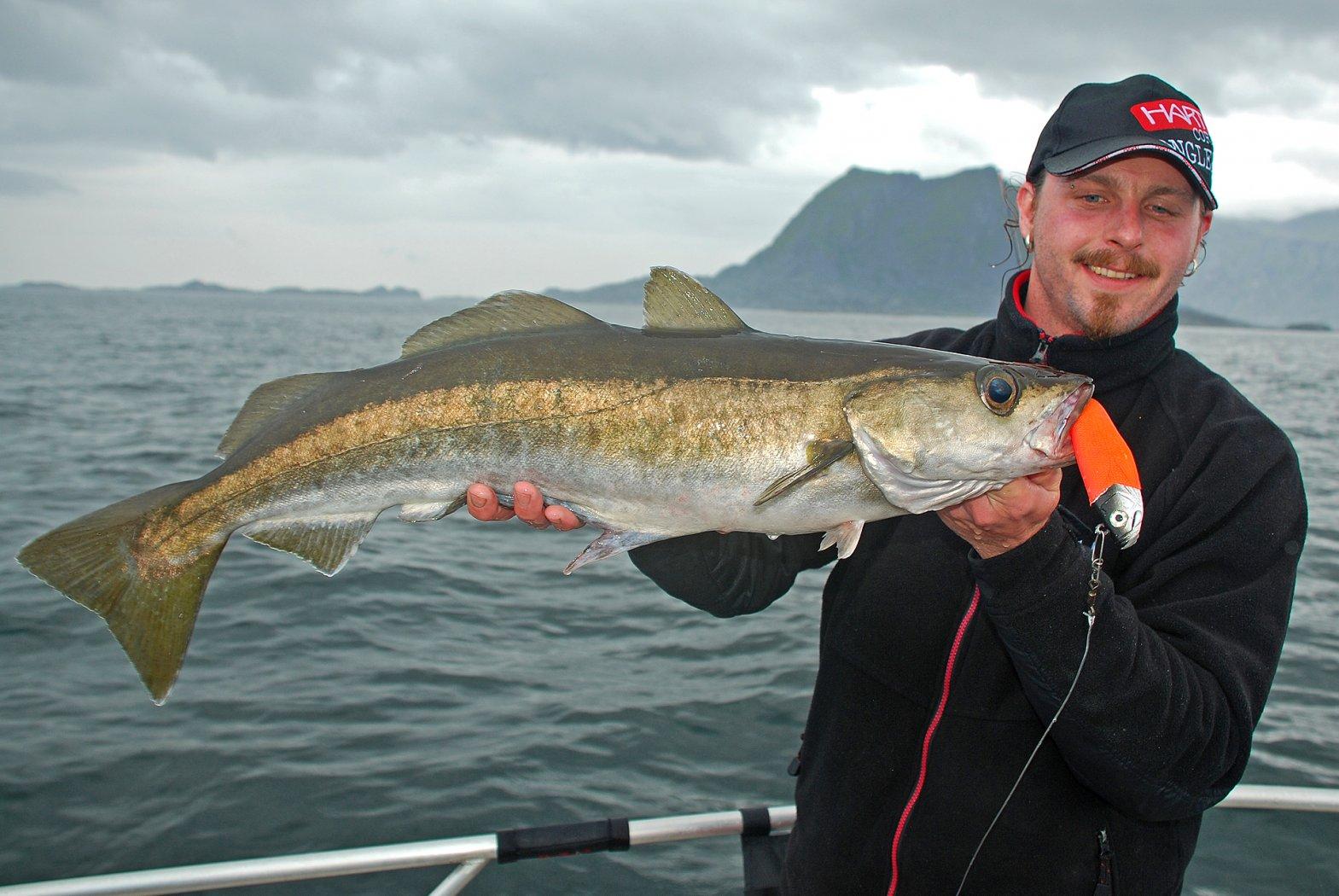 Fische Norwegen