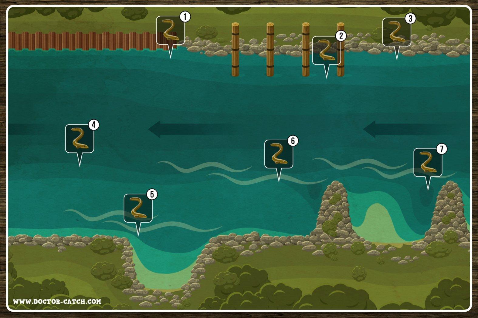 Aale angeln in großen Flüssen