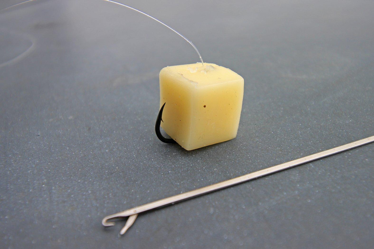 Barbenangeln: Käse auf dem Haken