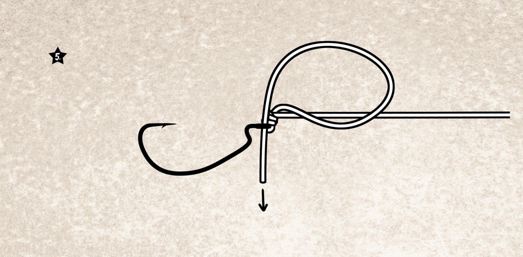 Knoten für die Drop Shot Montage