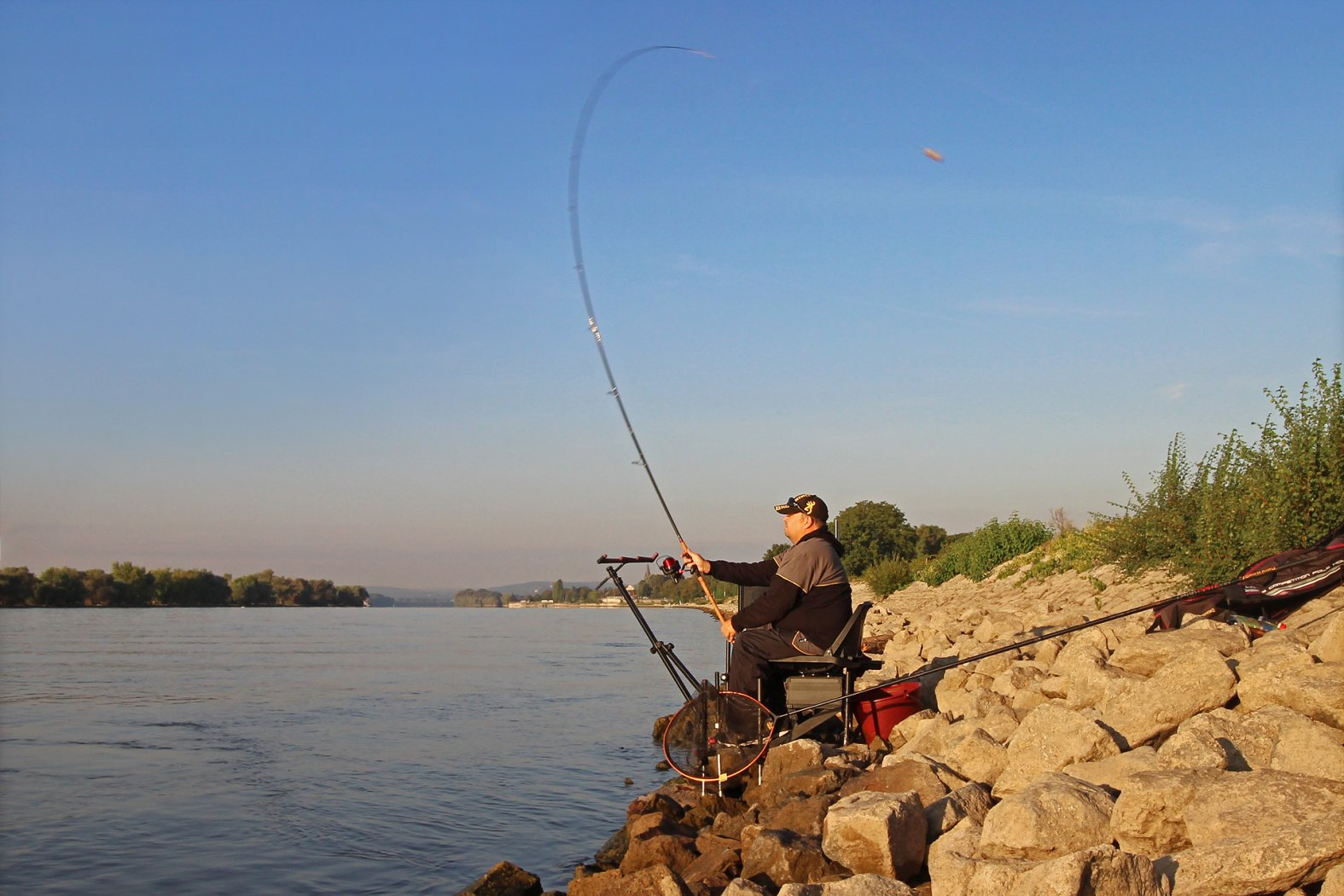 Barben fangen am Rhein