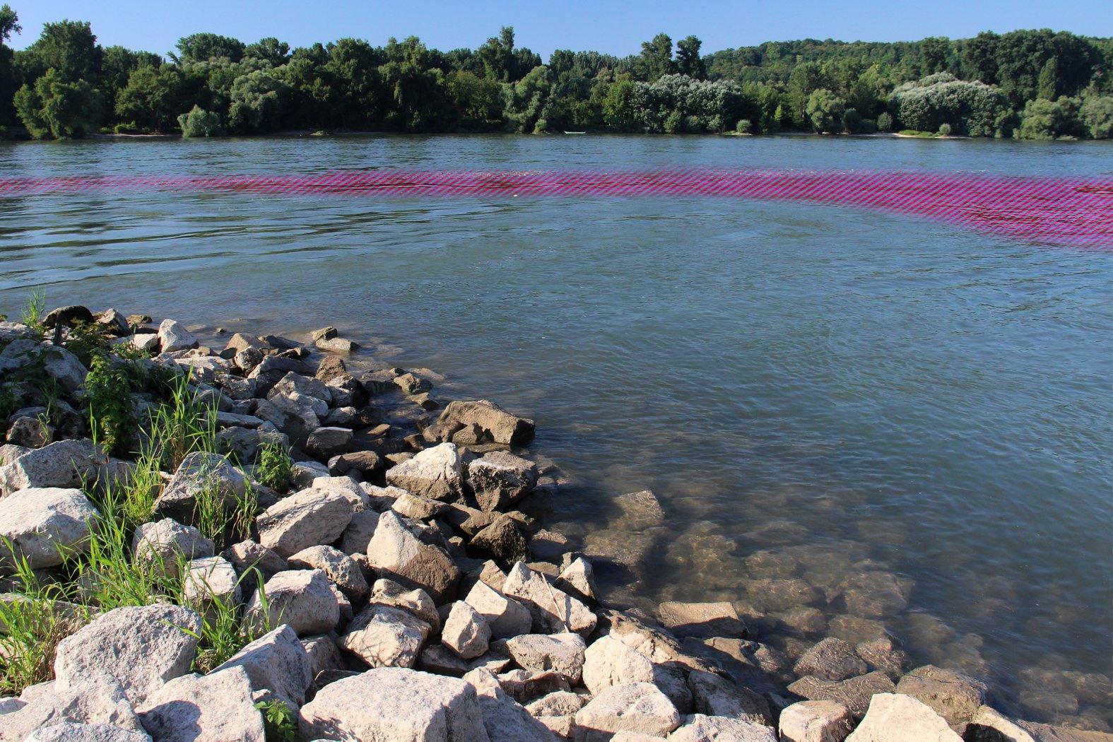 Barbenangeln im Fluss