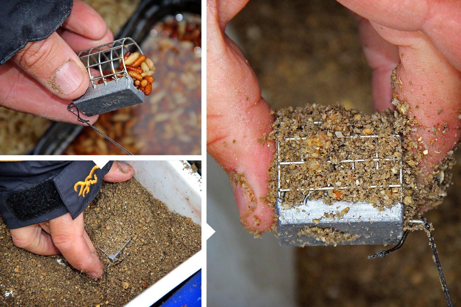 Rotaugen angeln mit Futterkorb