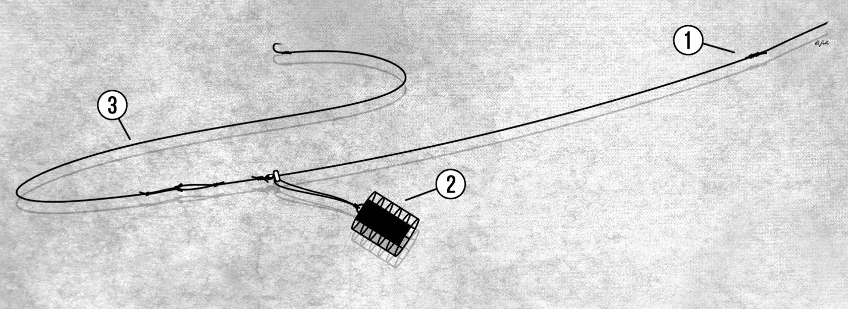 Feedermontage für Rotaugen