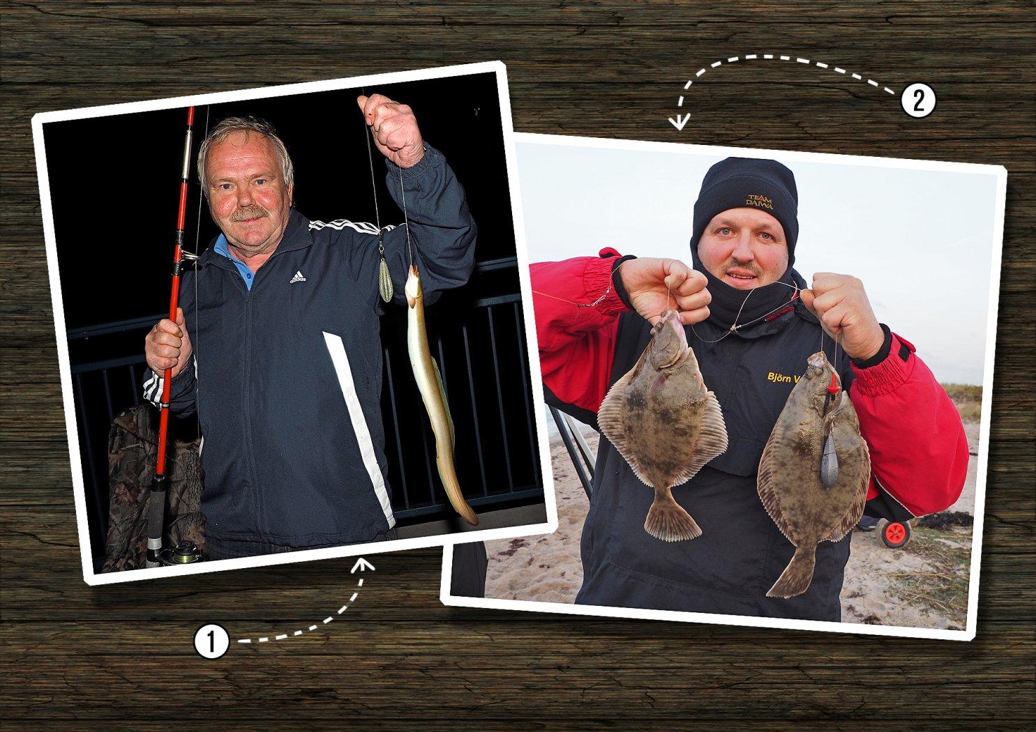 Anleitung Plattfische und Aale richtig töten
