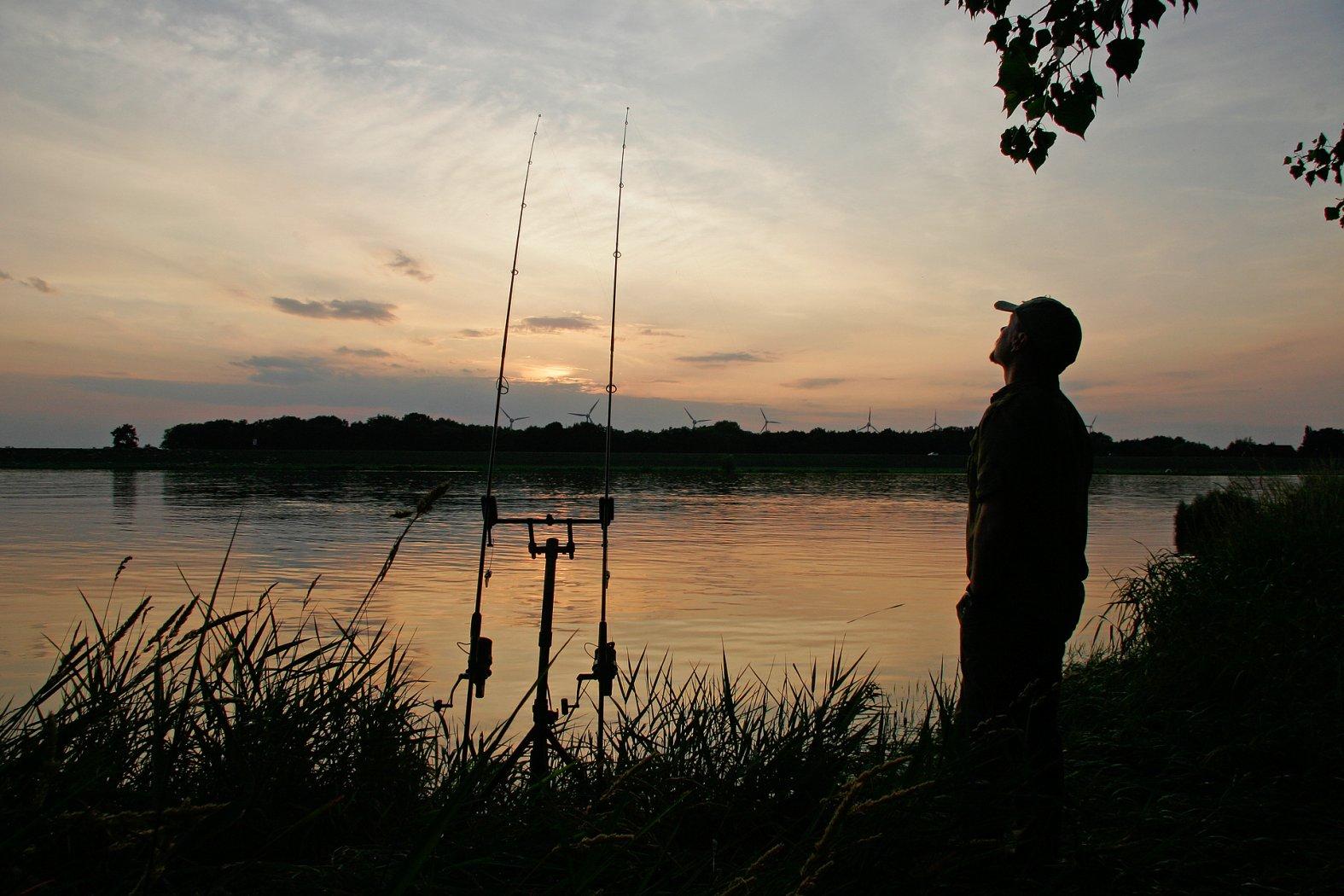 Auf Karpfen angeln im Fluss