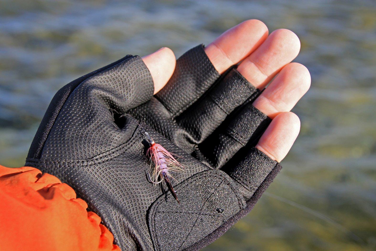 Küstenfliege zum Meerforellenfischen im Winter