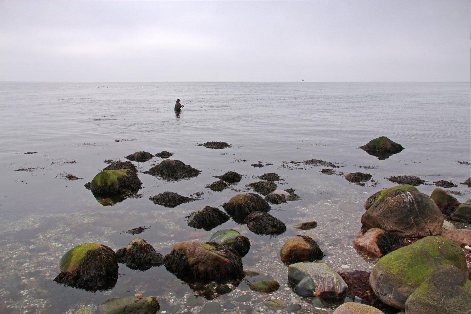 Guter Platz für große Meerforellen
