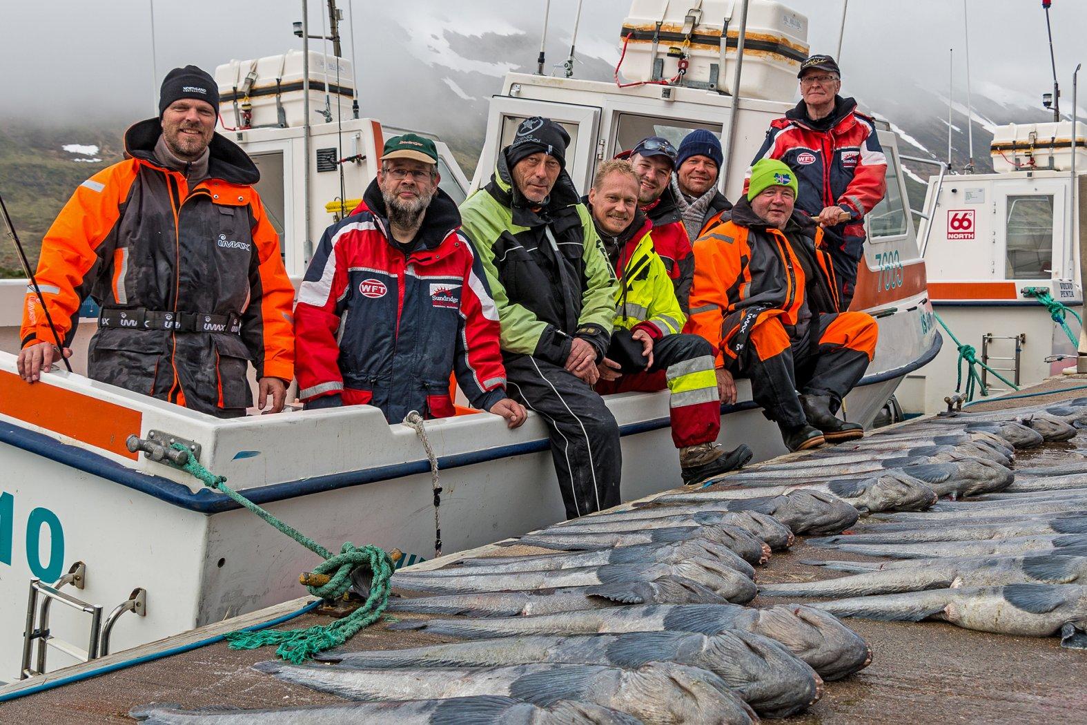 Steinbeißer angeln in Island