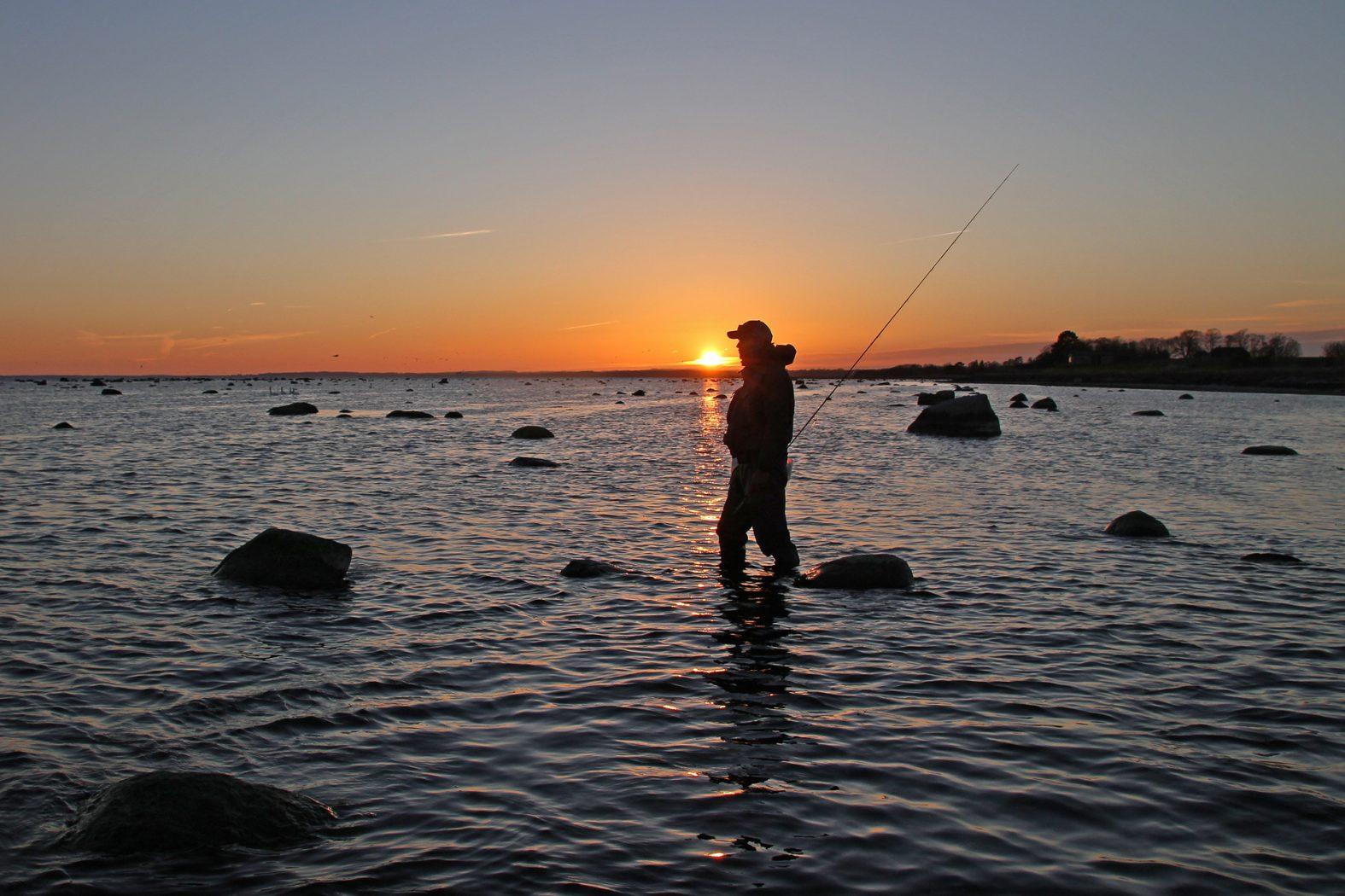 Abendliches Meerforellenangeln bei Lund