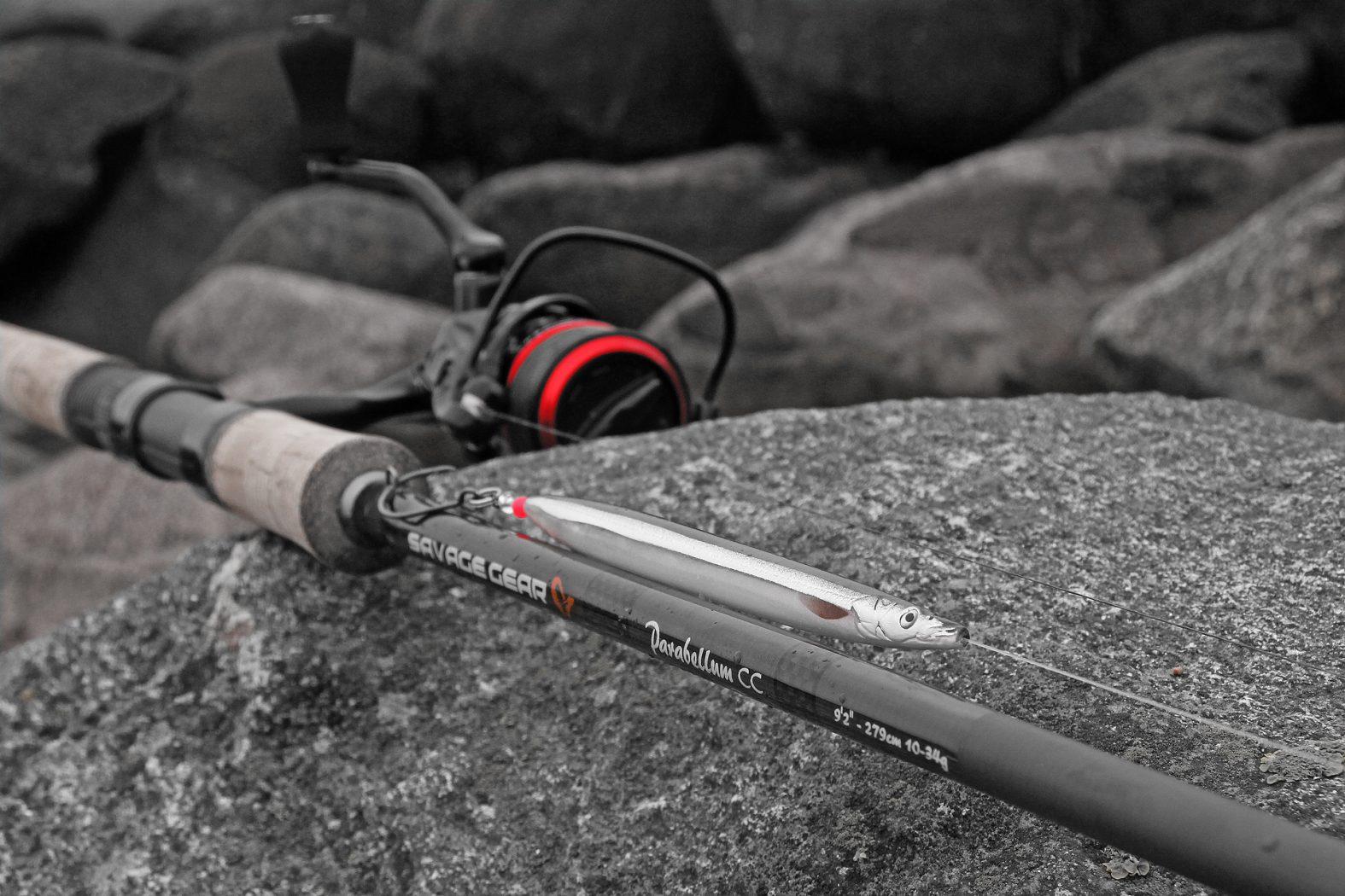 Welches Gerät zum Angeln auf Meerforelle?