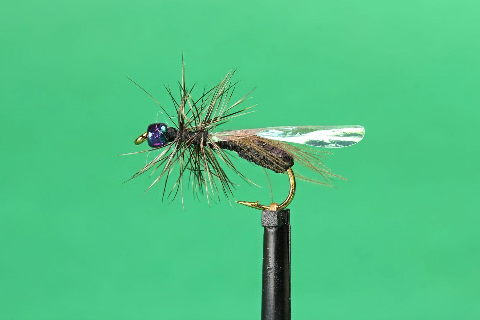 Trockenfliege Ameise
