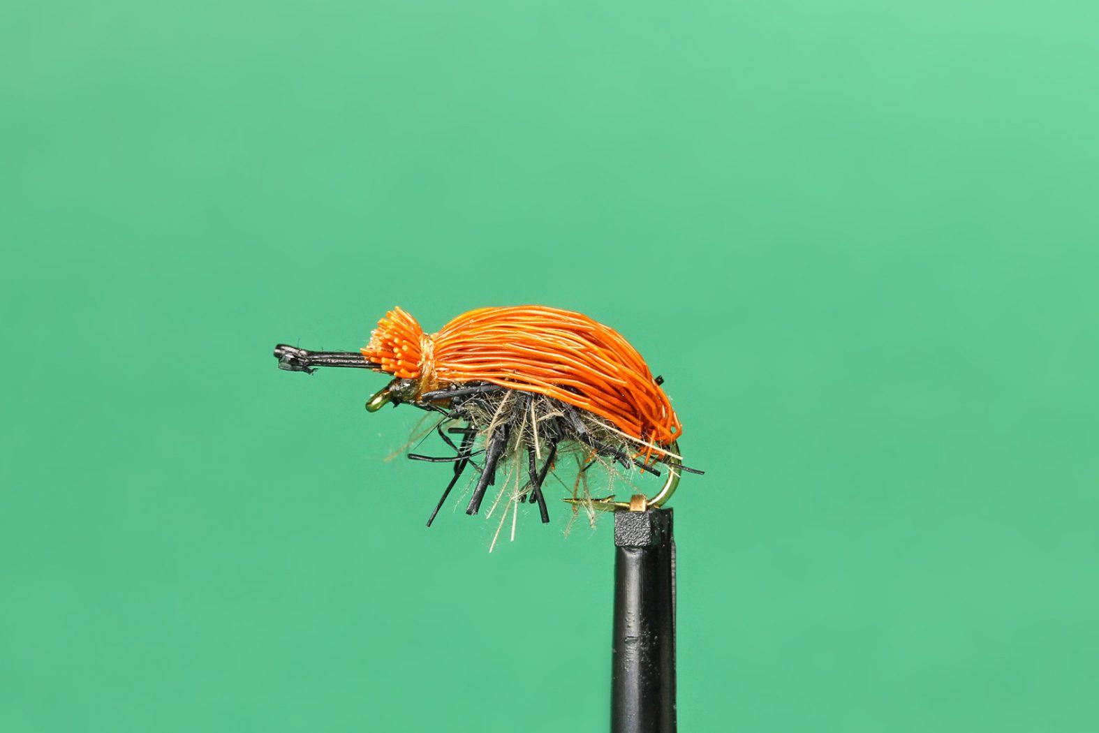 Käfer als Trockenfliege