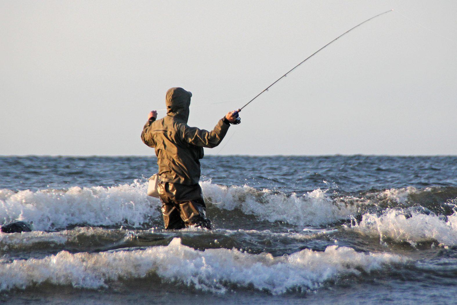 Fliegenfischen auf Meerforelle an der Küste