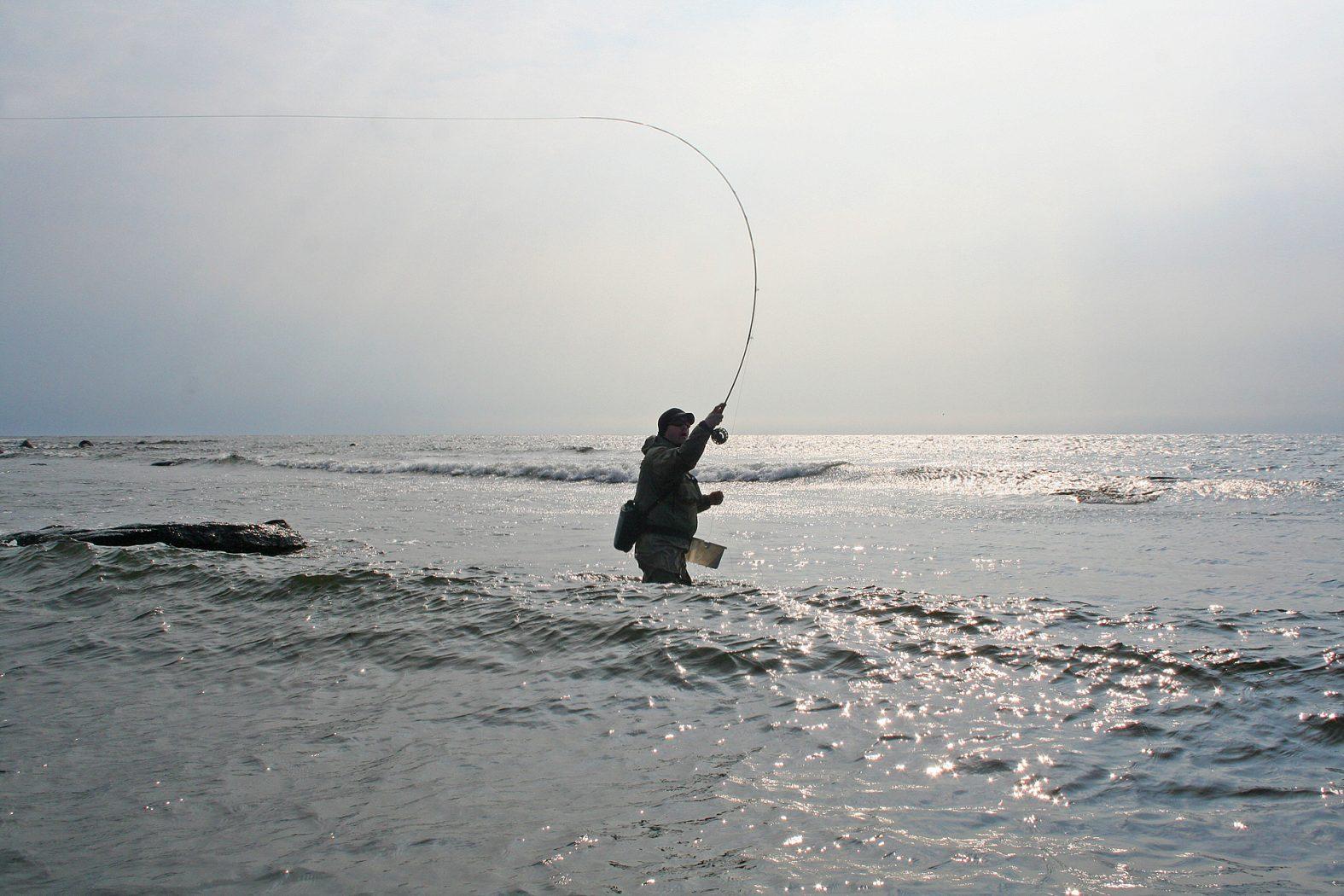 Fliegenwerfen an der Küste