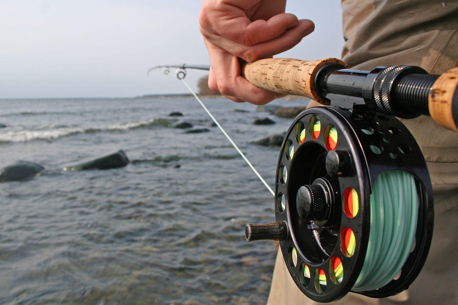 Welche Fliegenrute und -rolle zum Fliegenfischen auf Meerforelle
