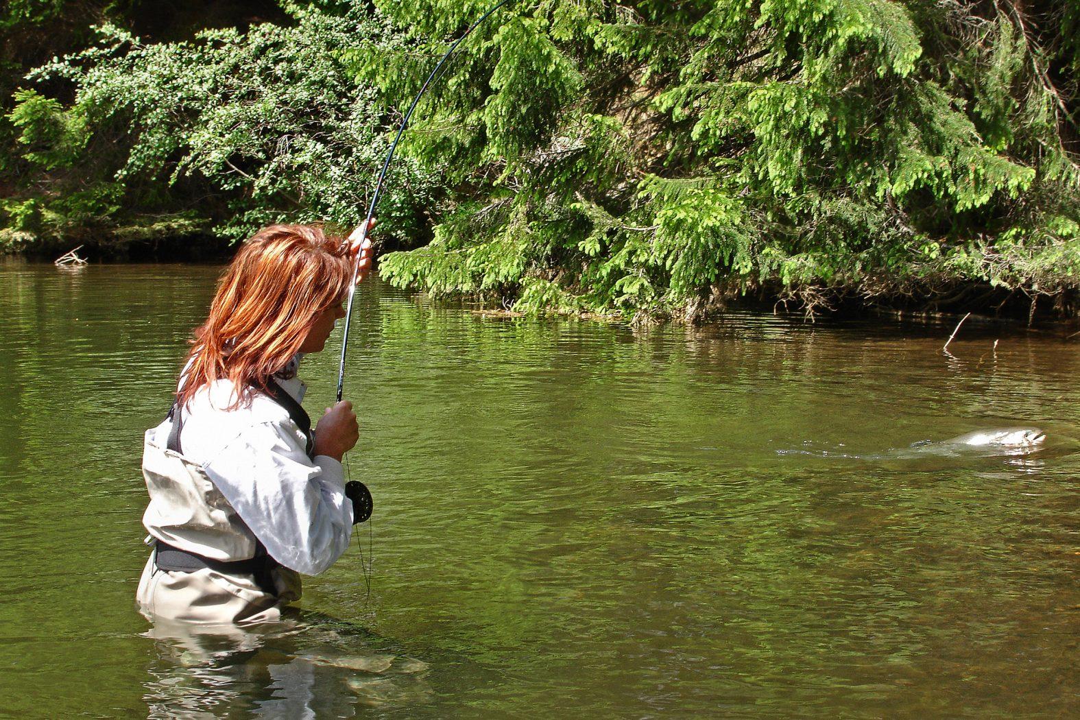 Fliegenfischen mit Streamer im Fluss und Bach