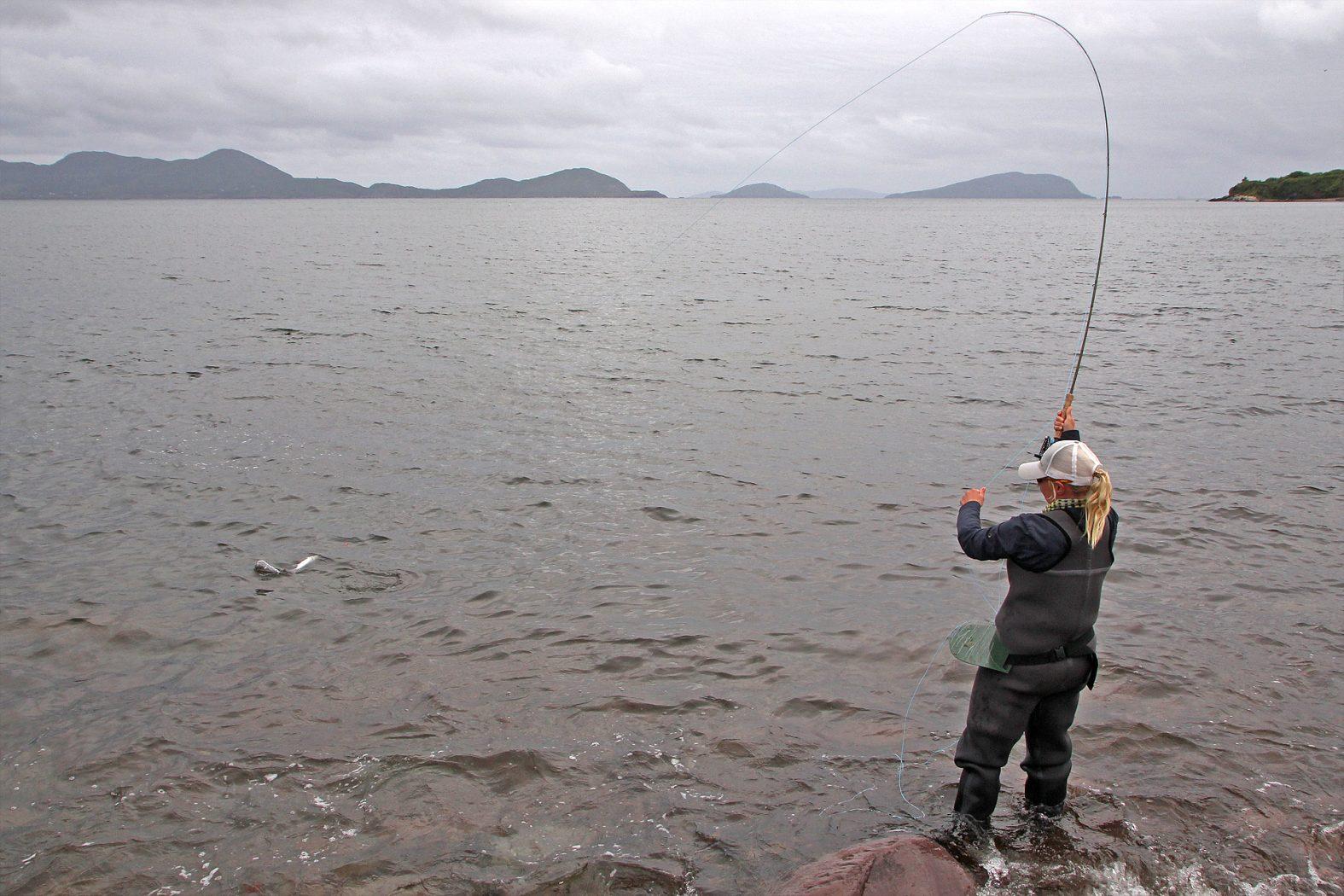 Meeräsche angeln mit der Fliegenrute