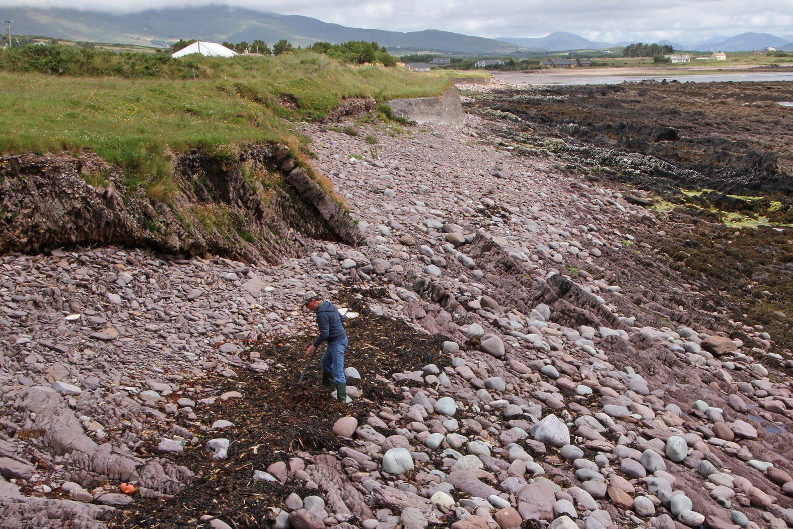 Angelplatz für Meeräschen