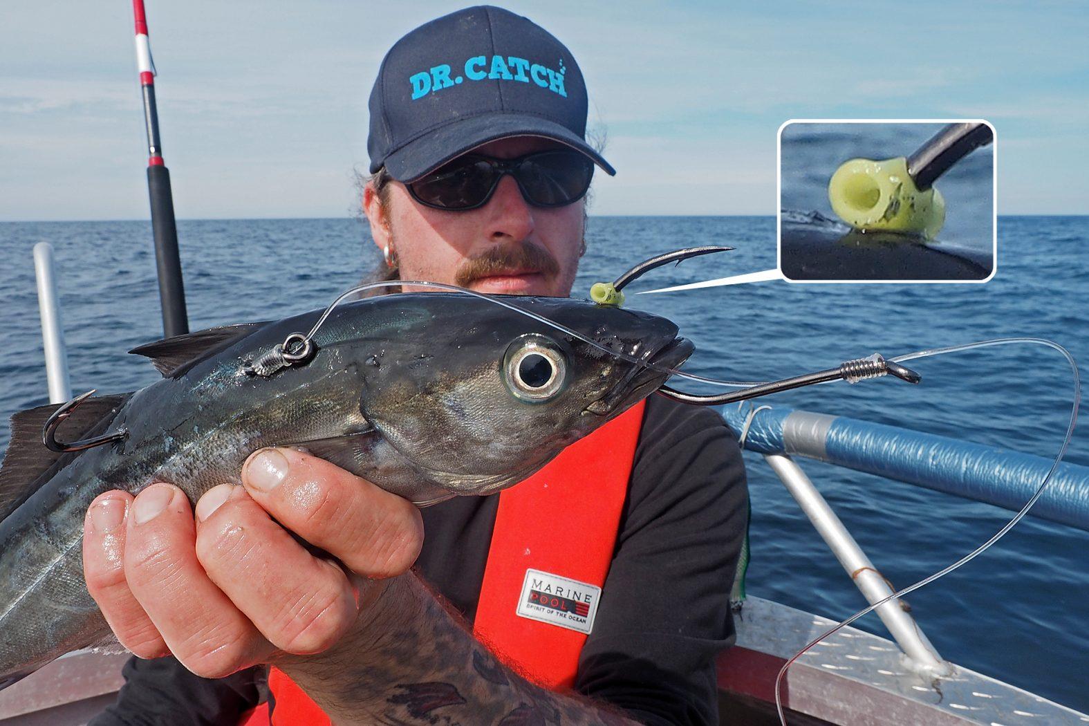 Angeln mit Köderfisch in Norwegen