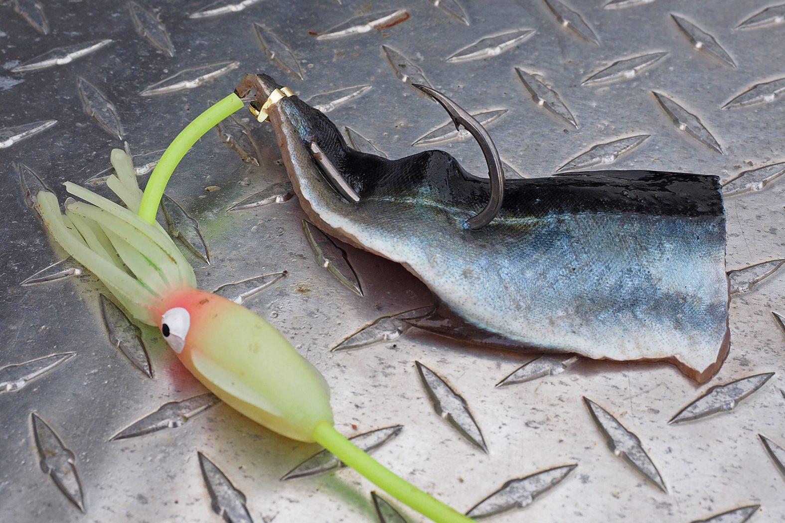 Filet anködern beim Tiefseeangeln