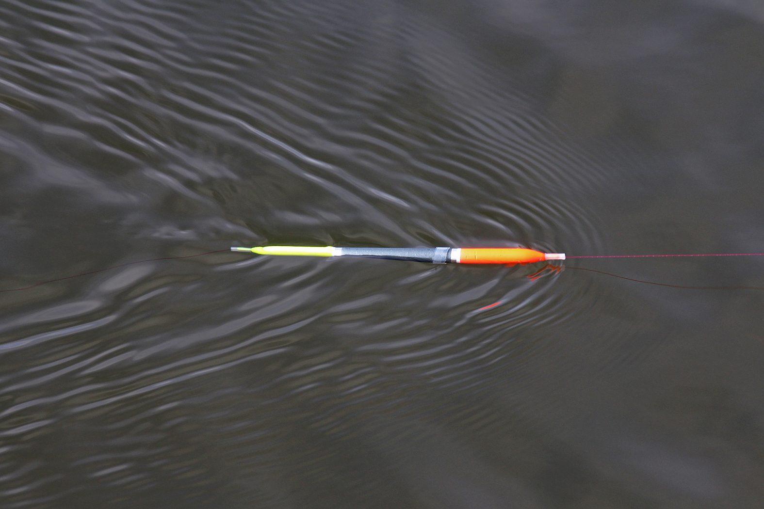 Mit Federkiel angeln auf Forelle