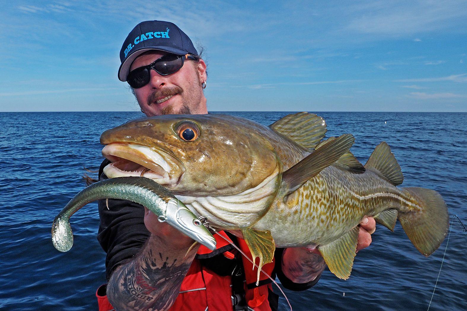 Dorsche angeln Mittelnorwegen