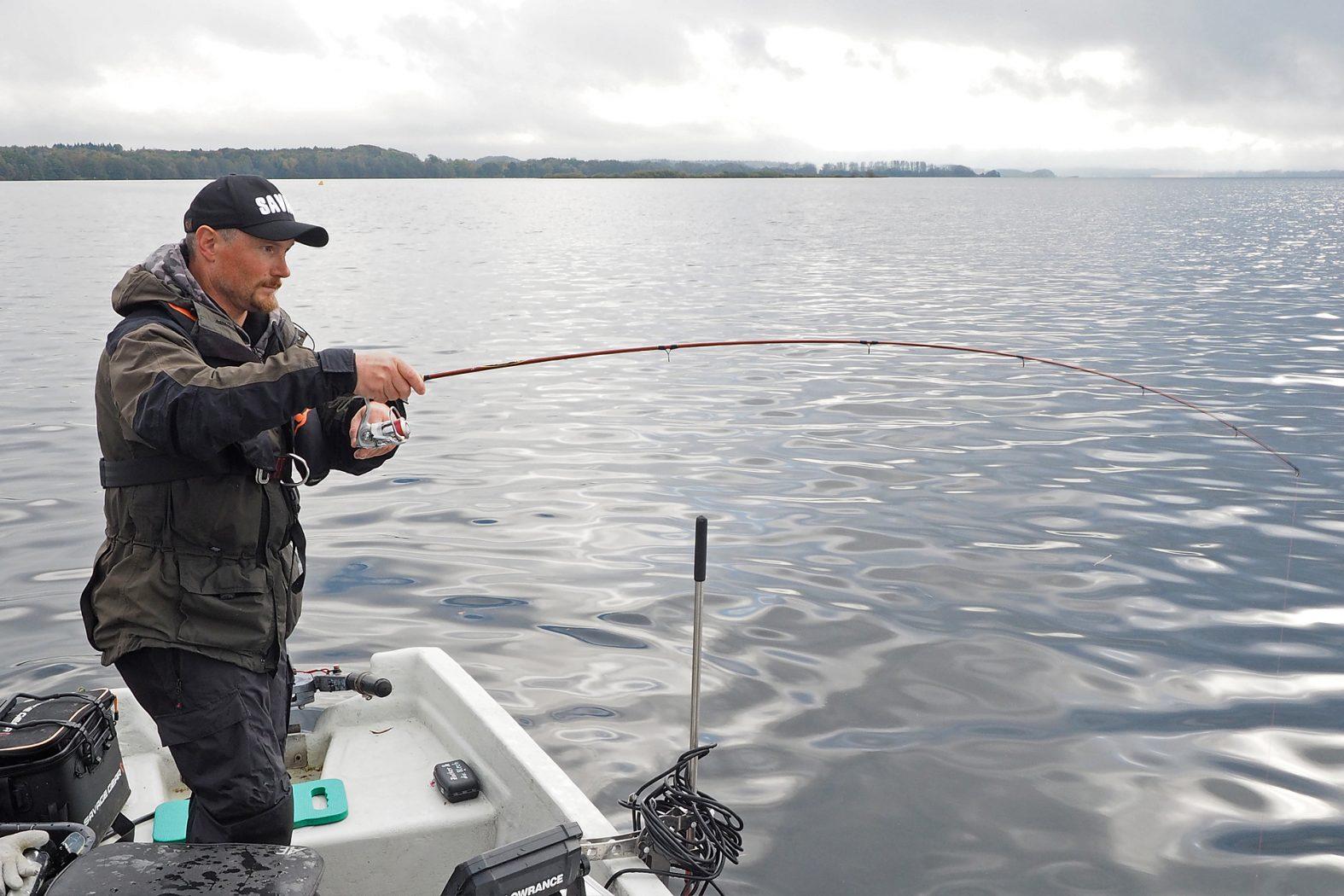 Barsch angeln auf großen Seen