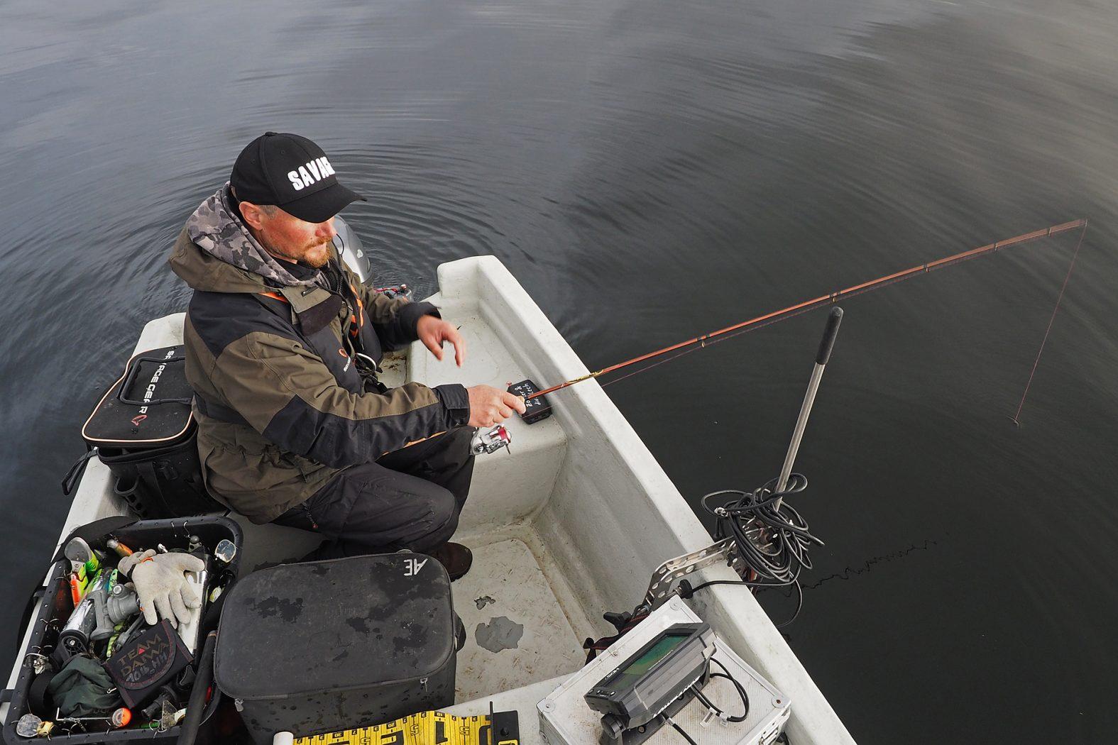 Zocker angeln auf Barsche