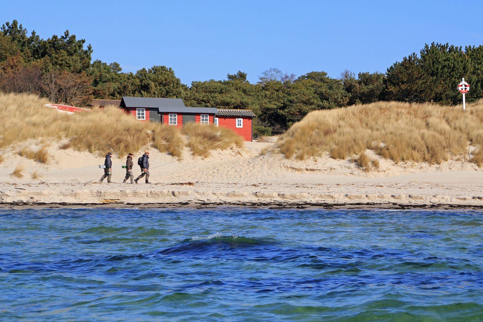 Meerforellen angeln vor Sommerodde auf Bornholm