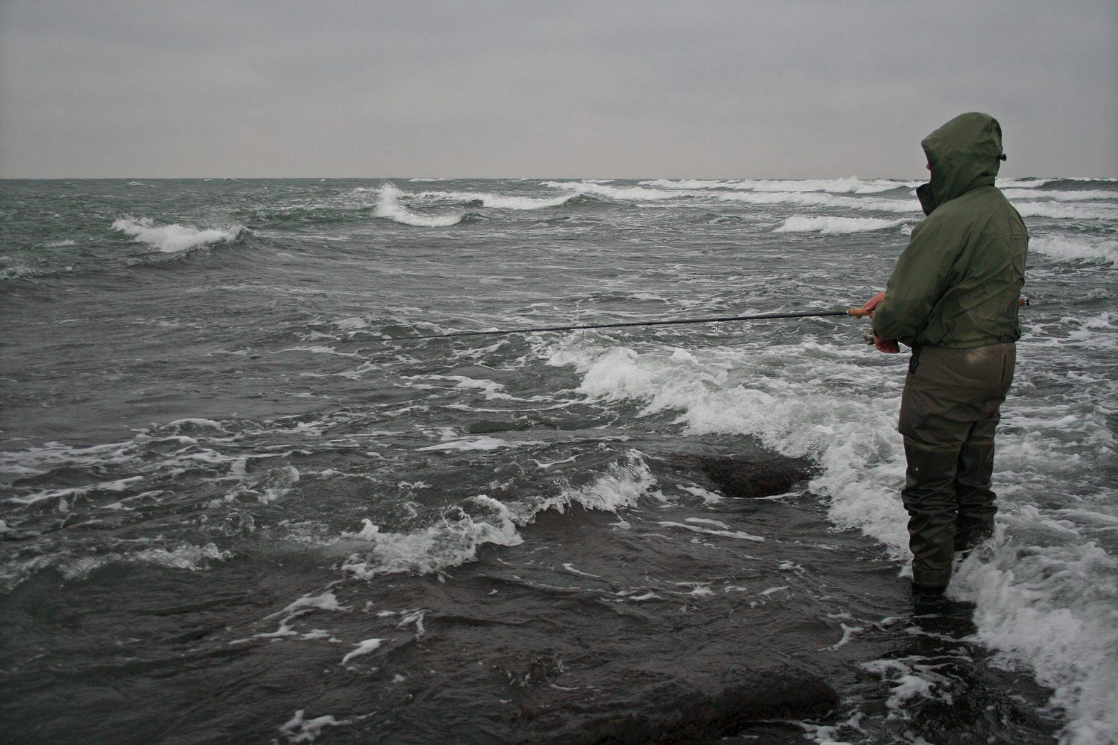 Meerforellen angeln bei Salthammer Odde