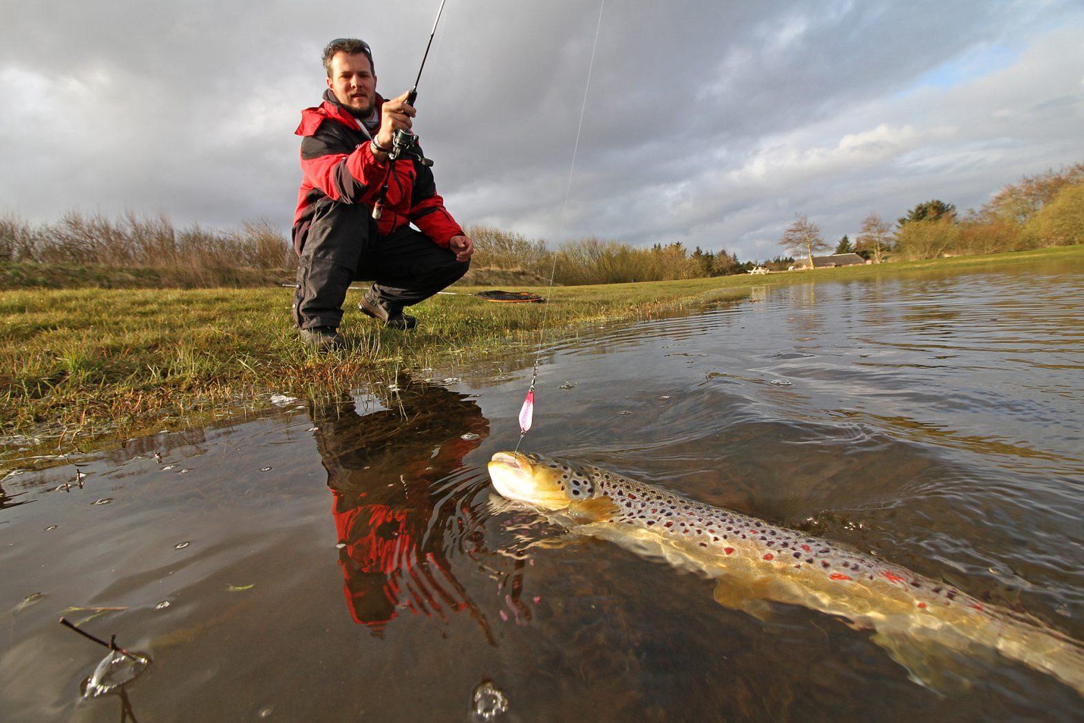 Ul-fischen auf Forelle