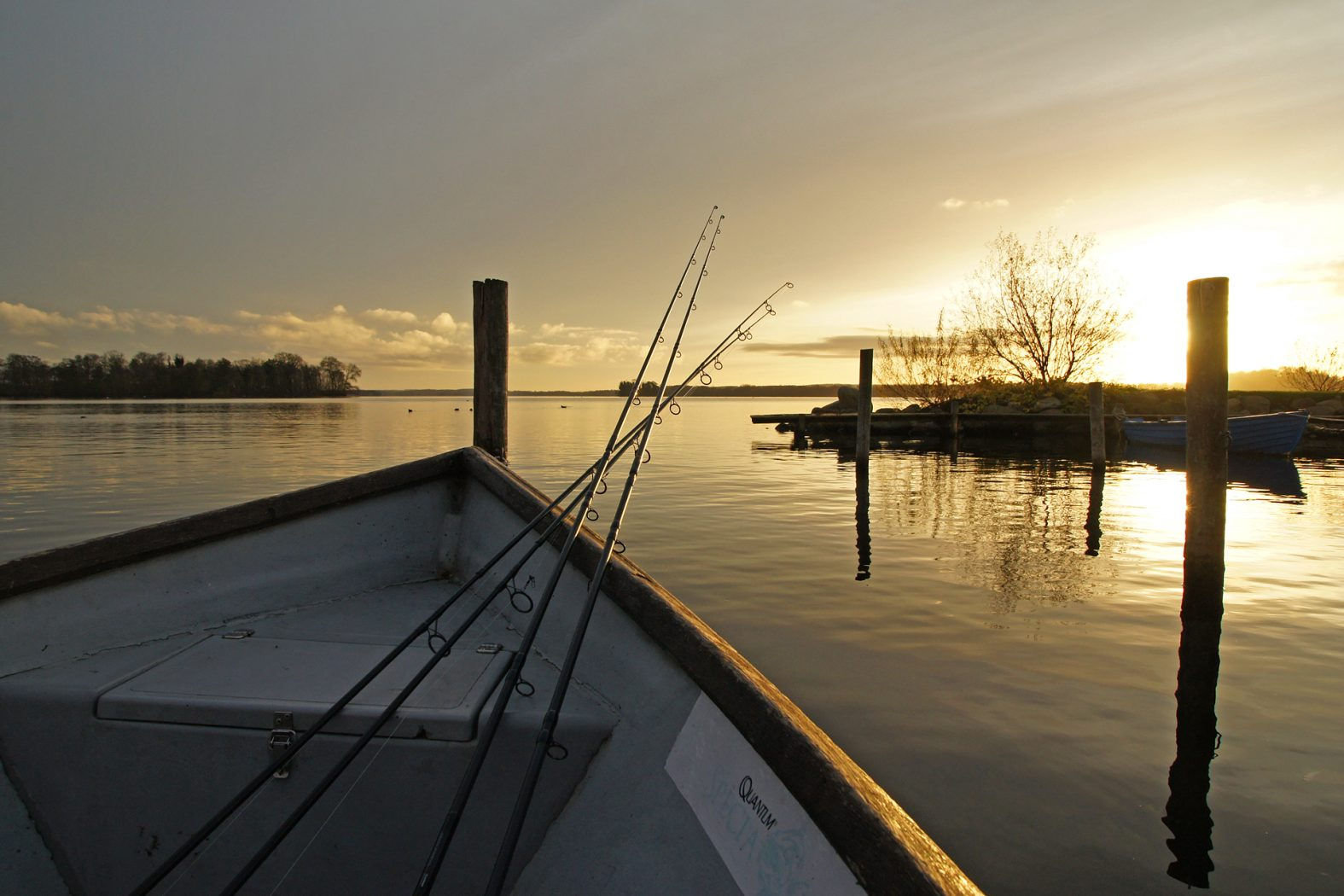Quappenangeln im Plöner See