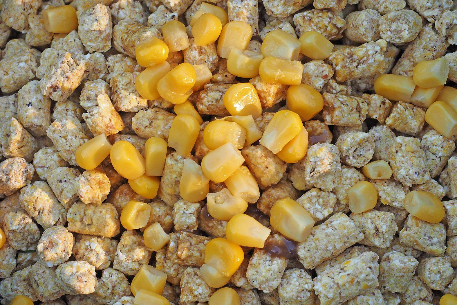 Maispellets zum Angeln