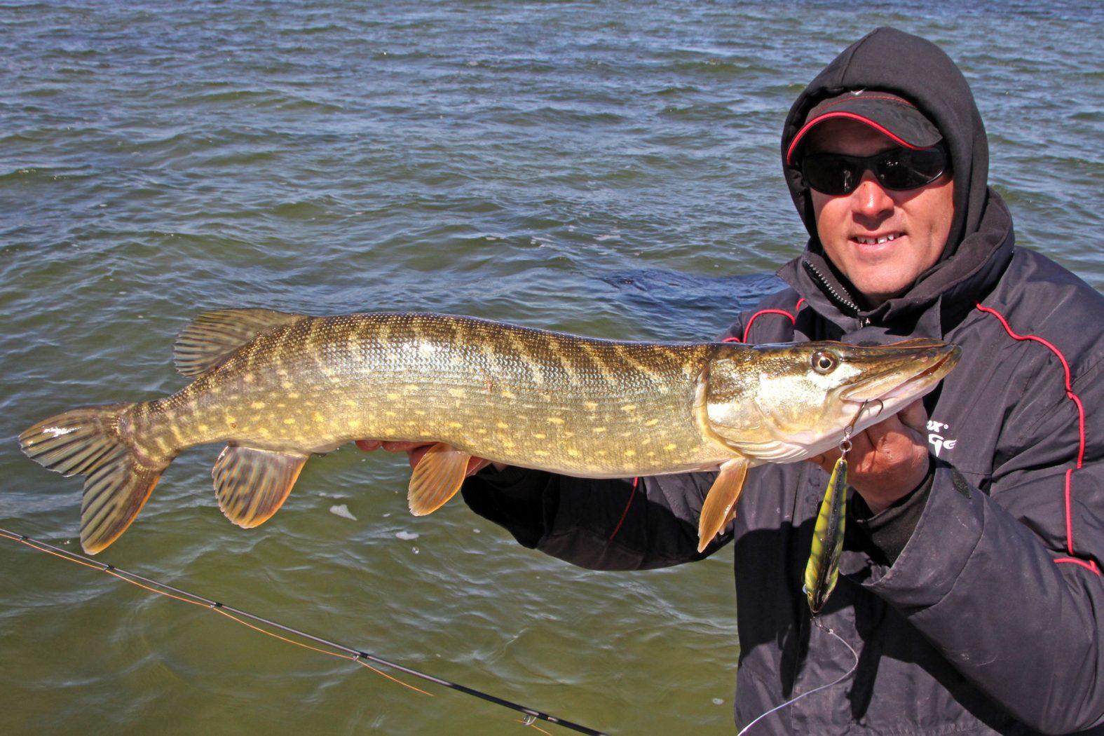 Hecht angeln auf Rügen mit Angelguide