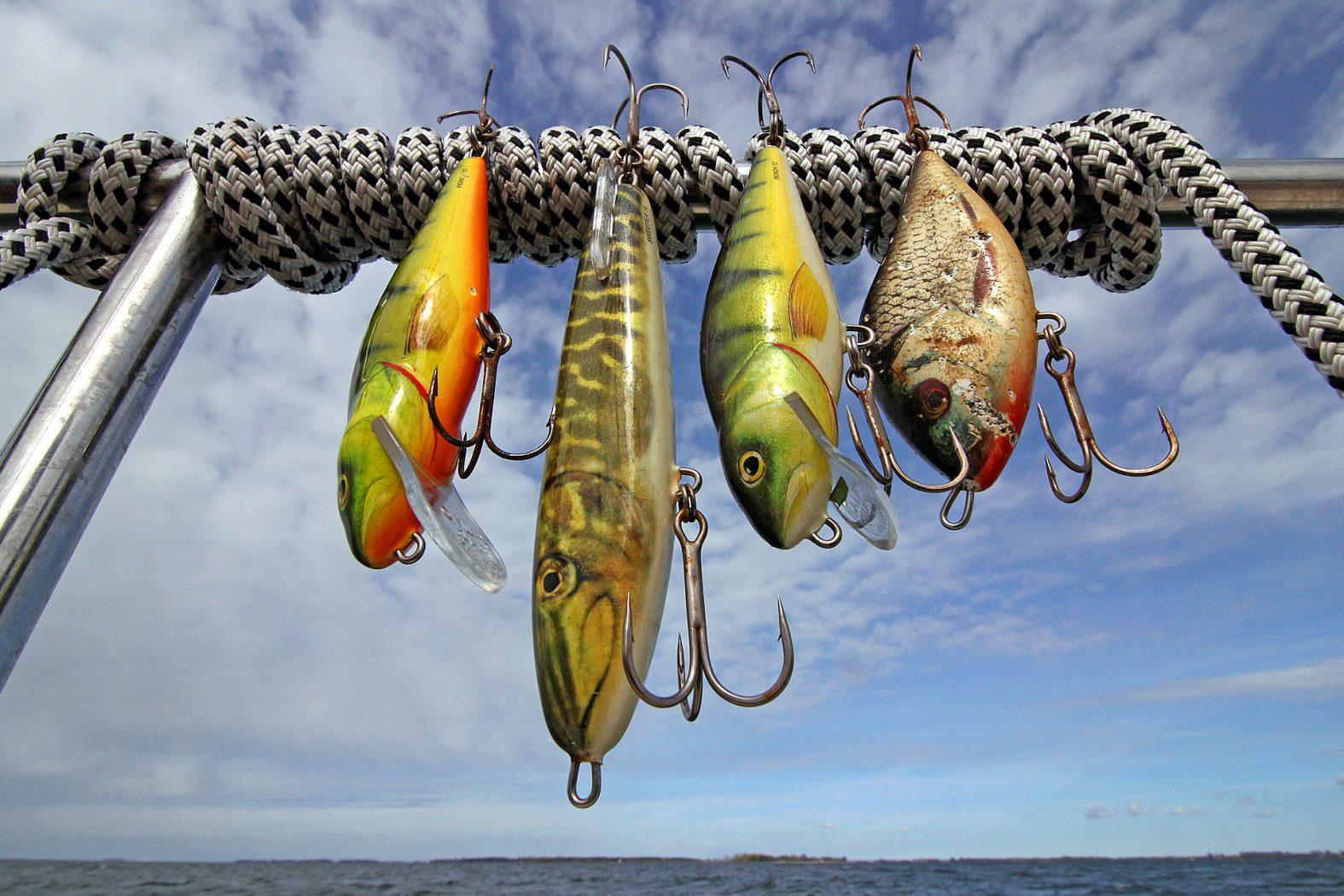 Bodden angeln: Köder für Hecht