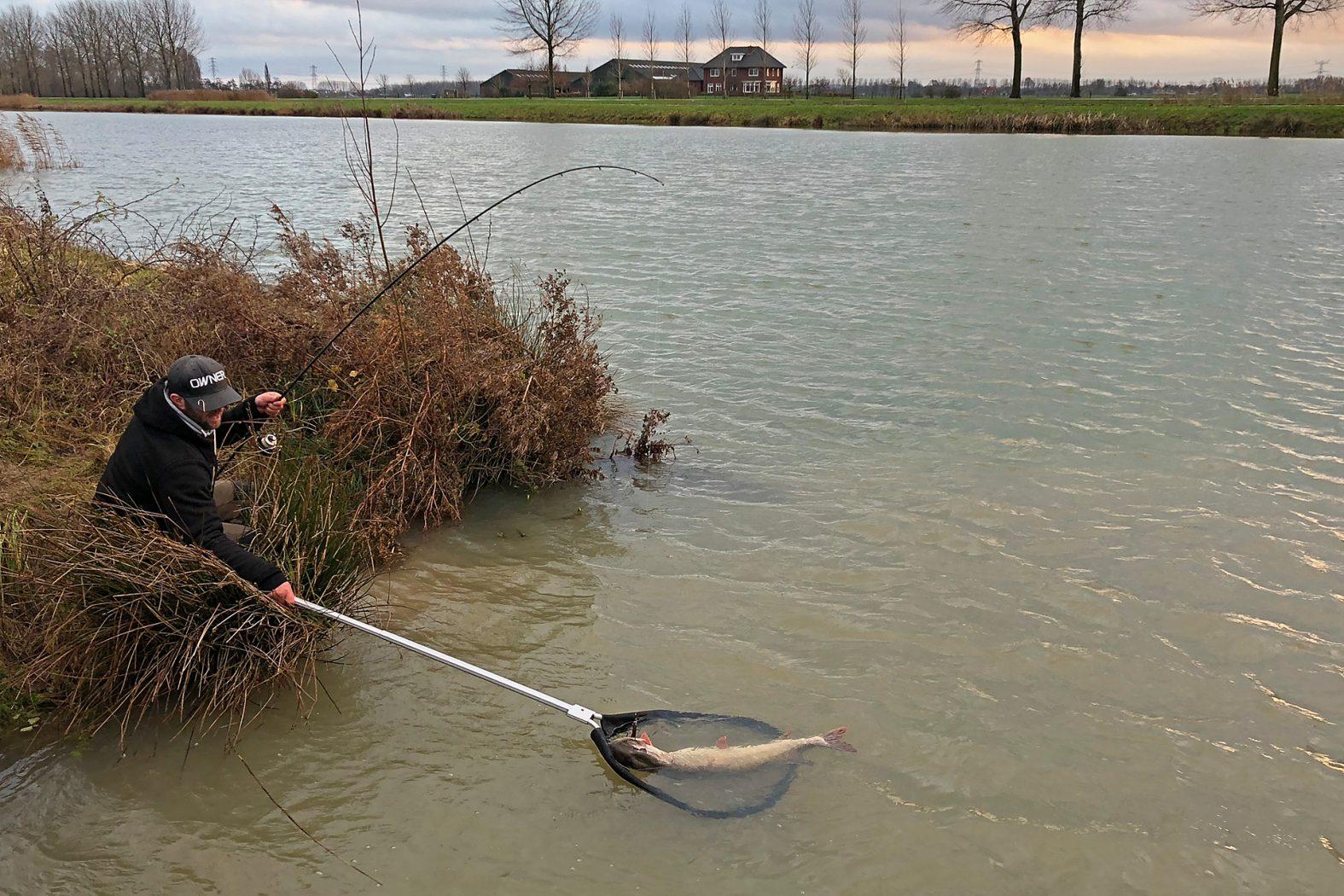 Mit Gummifisch auf Hecht angeln